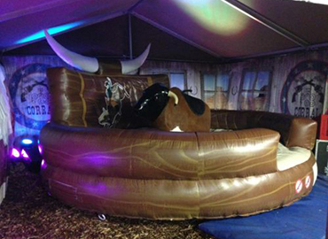 party rodeo bull